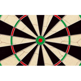 Dartboard Champon´s Choice II